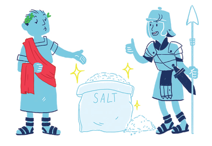 Salt is Salary